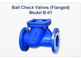 Ball Type Check Valves (NRV) B-01